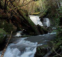 Strickland Ave Falls 3 by CameronHorner