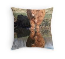 Highland Cattle Reflection Throw Pillow