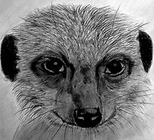 Simples! by DianeL
