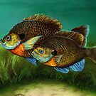 Pretty Little Panfish by Kathleen Kelly-Thompson
