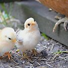 mommy you are so big! by Nicole W.