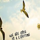 We Are Once In A Lifetime by maezors