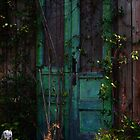 No Entrance Trellis by SteveeD