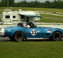 Mosport 2012.. No 6 in the series....... by Larry Llewellyn