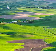 The Rolling Hills of the Palouse by Jim Stiles
