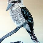 Kookaburra by © Linda Callaghan