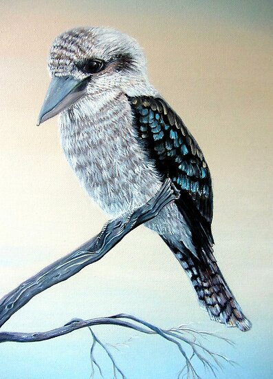 Kookaburra by  Linda Callaghan