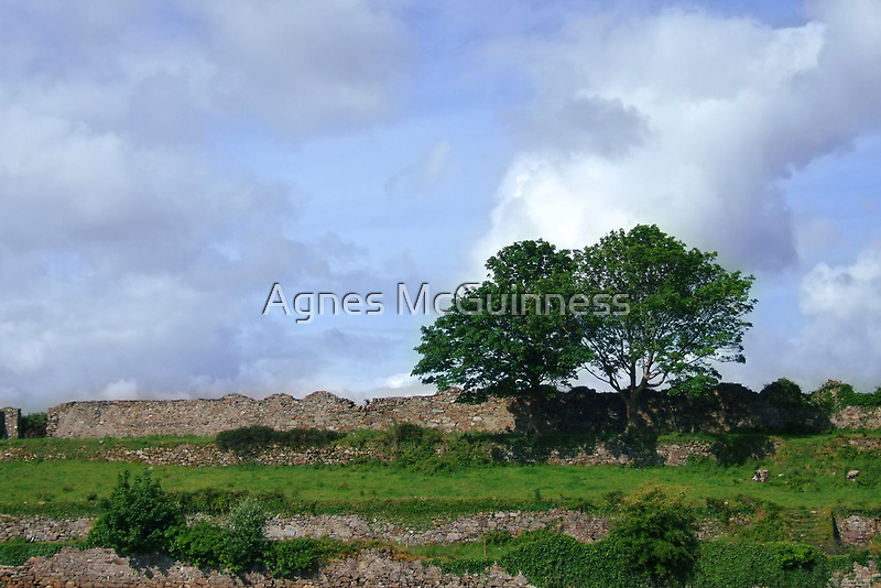 Old walls by Agnes McGuinness