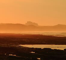Warm Glow over Bamburgh Castle by Paul Bettison