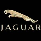 Jaguar Car Emblem  by Walter Colvin