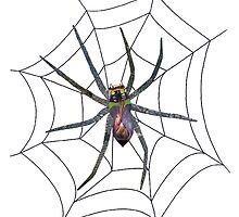 Web Crawler by Donuts