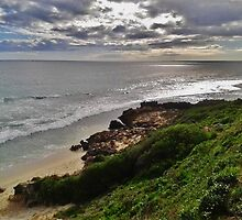 Western Australia by Shayla Butler