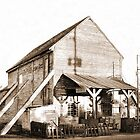 Shorterville Grocery by RickDavis
