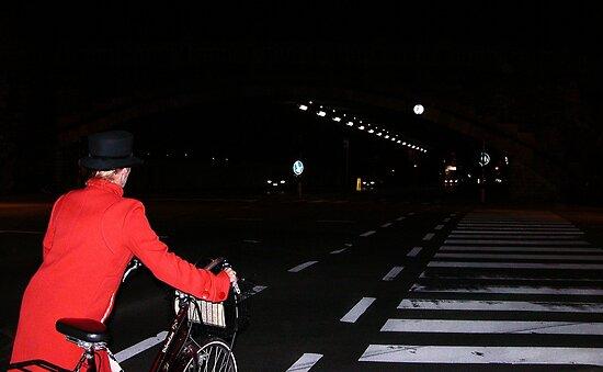 zebra crossing in Antwerp by Nikolay Semyonov