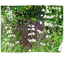 Little garden of eden Poster