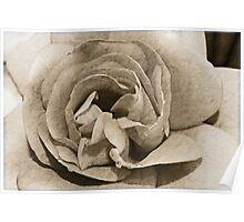 Antique Floral 4 Poster