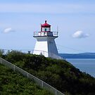 Cape Enrage Lighthouse by Robin Simmons