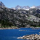Pure Beauty Of The Sierras by marilyn diaz