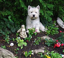 The best statue on my rockery by MarianBendeth