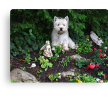 The best statue on my rockery Canvas Print