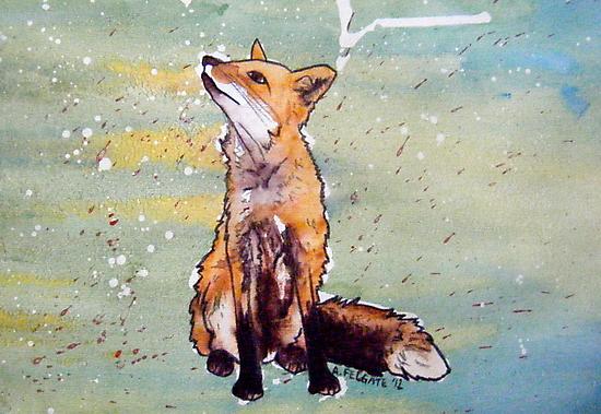 Little Red Fox  by Alexandra Felgate