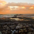 Turimetta Rocks! by Doug Cliff