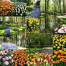Keukenhof Gardens Collage by Kathryn Jones