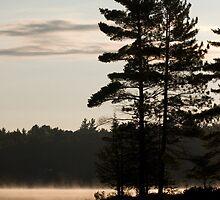 Trees, lake, mist,  by Mark  Spowart