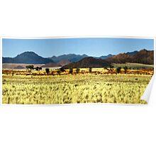 Naukluft Mountains, Namibia Poster