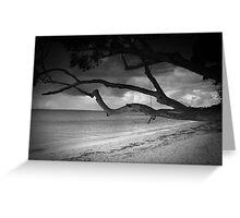 Along the shore at Bagnalls 4 Greeting Card