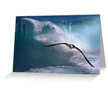 Freedom To Soar Greeting Card