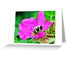 Bumble Bee in Flower Greeting Card