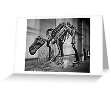 Dinos are cool. Greeting Card