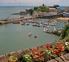 Tenby by RedHillDigital