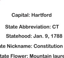 Connecticut Information Educational Sticker