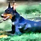 Doberman Pinscher - Lying Dobie by doggylips