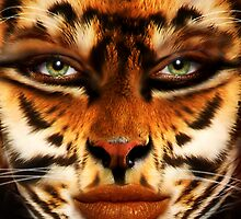 Cat Eyes by Cliff Vestergaard