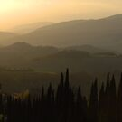 Evening Shades Tuscany Italy by Bob Christopher