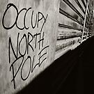 Occupy North Pole by Leanne Churchill