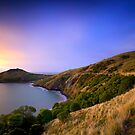 Taiaroa Head - Dunedin NZ by Maxwell Campbell