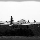 B-17 WWII Day by djphoto