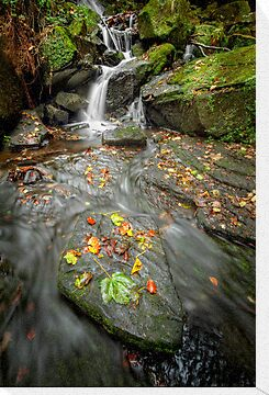 Autumn Waterfall by Patricia Jacobs CPAGB LRPS BPE2