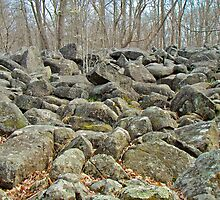 Devil's Potato Patch - Montgomery County - Pennsylvania by MotherNature