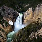 The Grandeur of Lower Yellowstone Falls  by Lucinda Walter