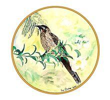 Yellow Wattlebird, Birds of Hepburn, 2011 by Liz Archer