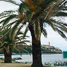 Entering in Bastia  -  Corsica by 29Breizh33