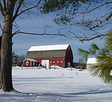 Red Barn in Winter by Janice Drew