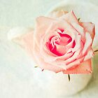 The Rose [Textured] by Nicola  Pearson