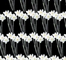 White Daffs by missmoneypenny