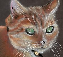 The Georgie Cat II by Amy-Elyse Neer